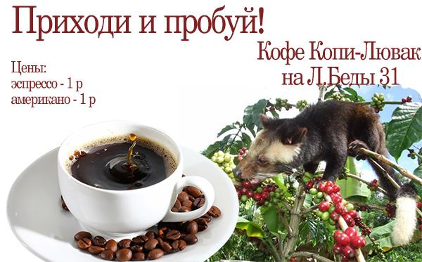 Цена кофе Копи-Лювак в магазине на улице Леонида Беды, 31