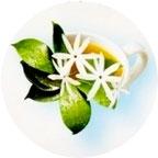 Зеленый чай и Жасмин
