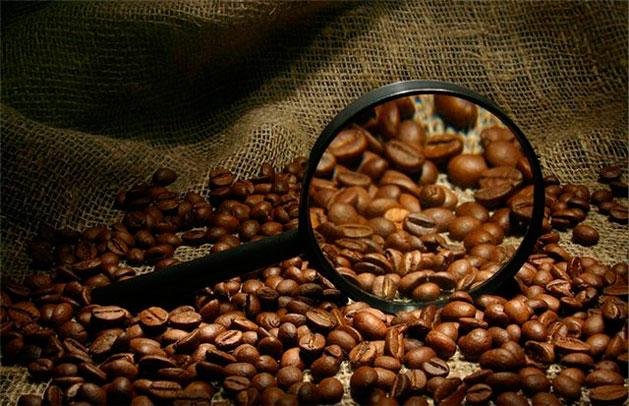Степени обжарки кофе в зернах